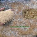 قیمت خرید سبوس برنج درجه یک امسال